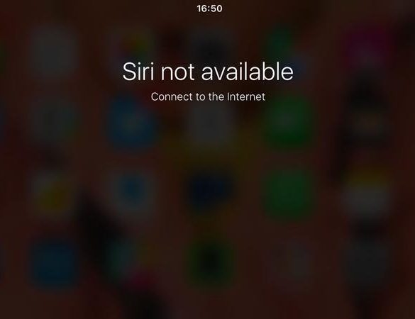 siri troubleshooting no internet connection 1200 thumb