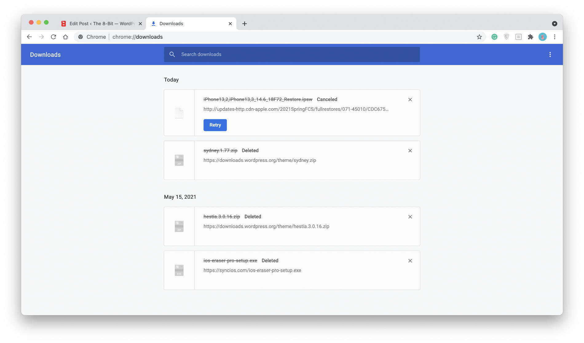 Chrome's Download Manager