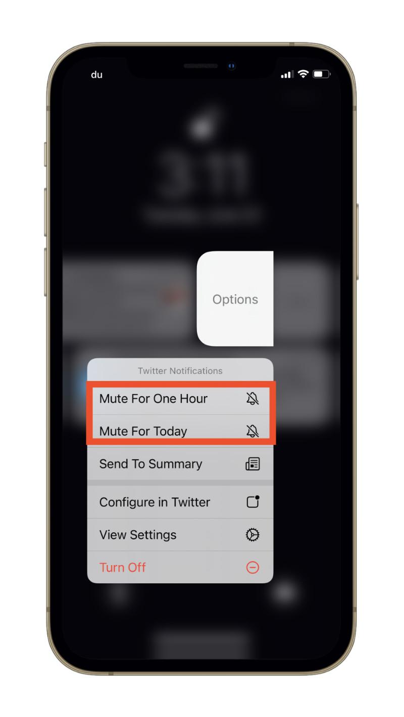 Mute notifications in iOS 15.