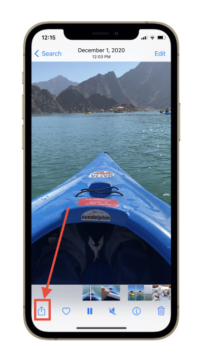 iOS 15 Photos app share sheet.
