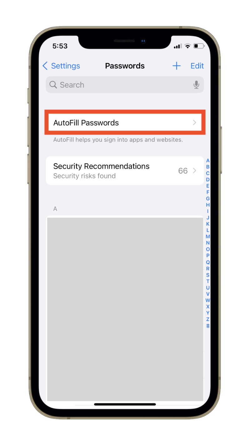 AutoFill Passwords