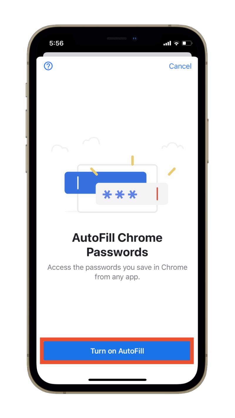 Enable Chrome AutoFill