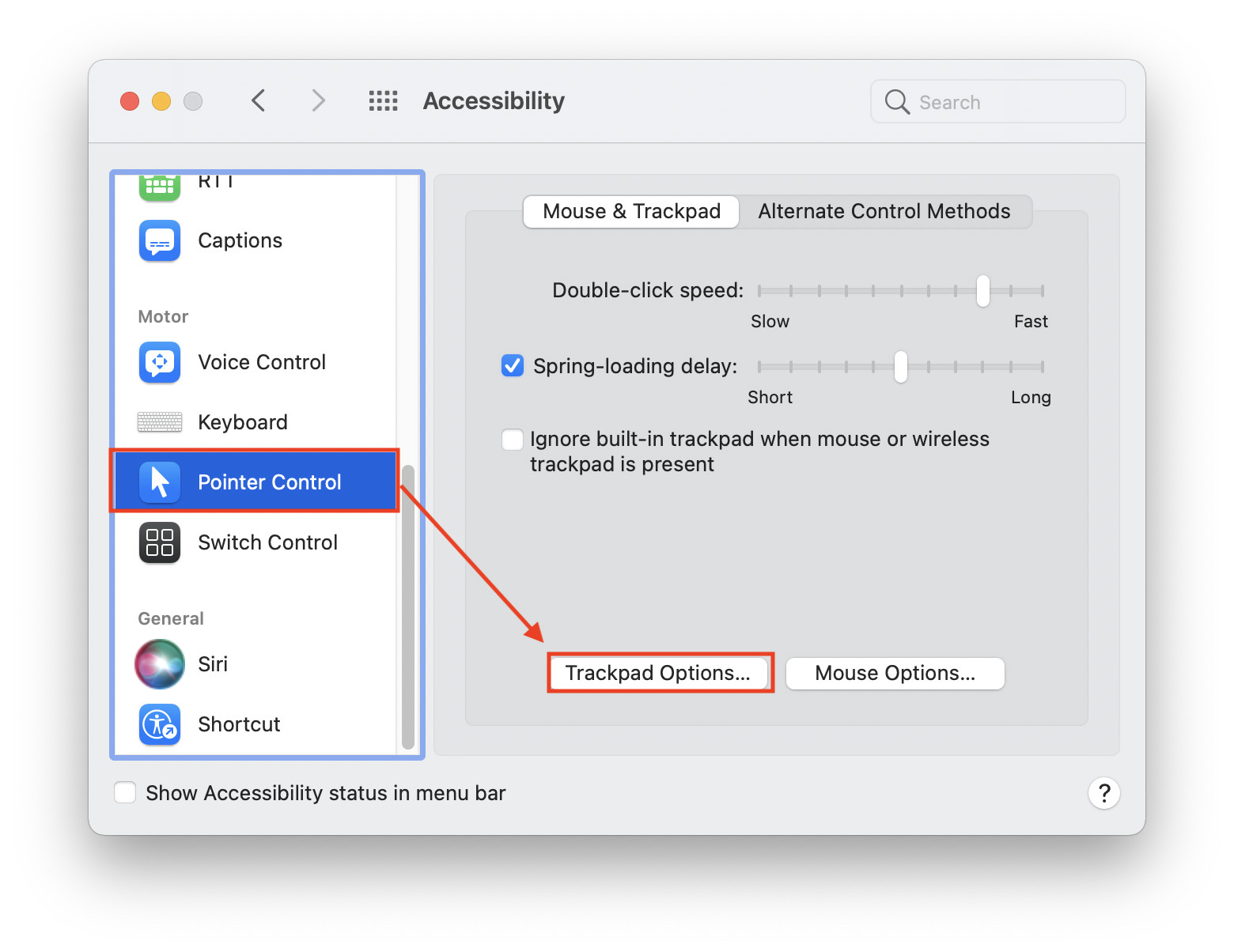 Pointer Control Accessibility Preferences